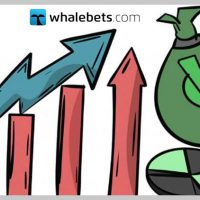 Bankroll management and staking plan
